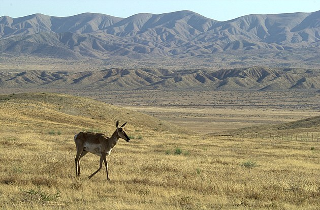 The Carrizo Plain National Monument