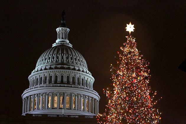 Congress Hosts Capitol Tree Lighting Ceremony